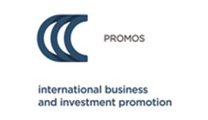 Organizer_Promos